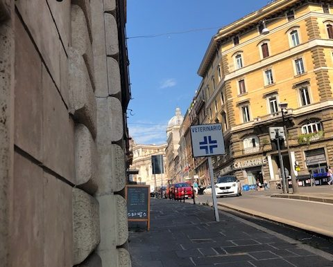 giadaimmobiliare-affitto-locali-monti-roma 8